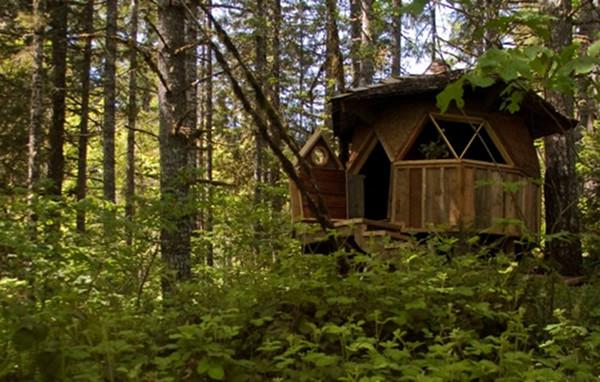 Tiny home dome