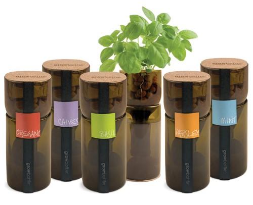 growbottle, hydroponic, garden, indoor gardening, recycled materials, wine bottle