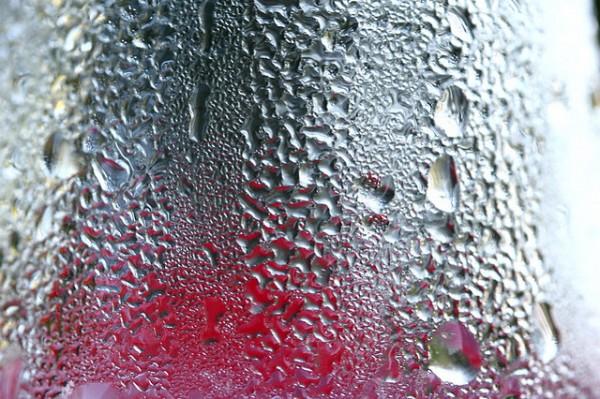 water condensation, namib desert beetle, water bottle, NBD Nano
