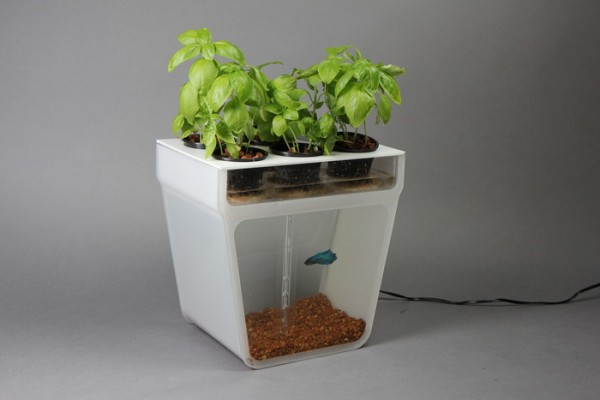 DIY, aquaponics, back to the roots, gardening kits, kickstarter