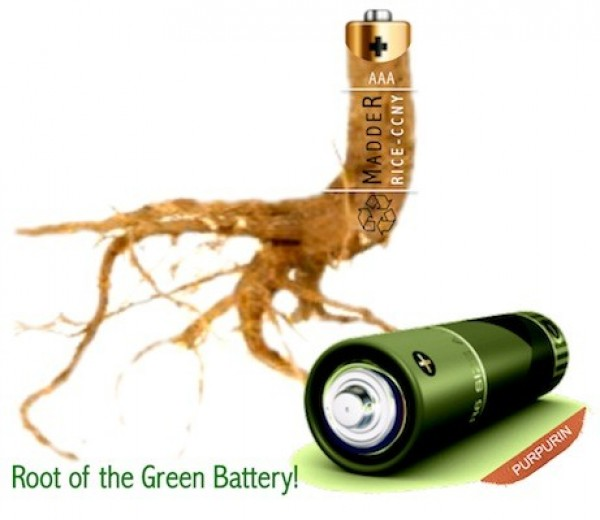 Madder, rechargeable battery, rare earth minerals, non-toxic