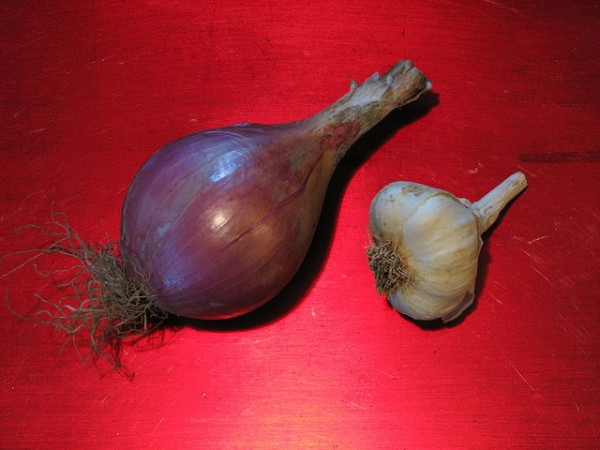 onion, garlic, India, industrial waste, pollutants, heavy metals
