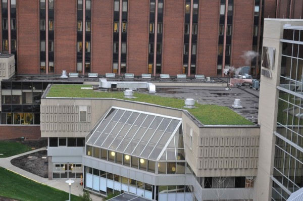 Image of Aultman Hospital's green roof via PRWeb