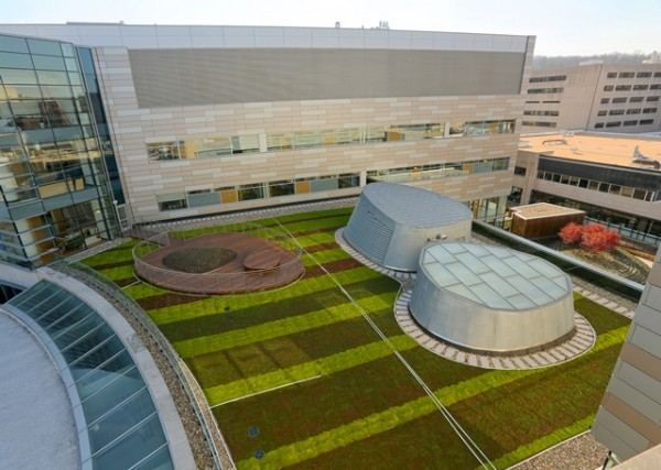 The green roof at Children's Hospital in Hershey, Pa., includes a wooden observation deck for patients and families. Image via LiveRoof.