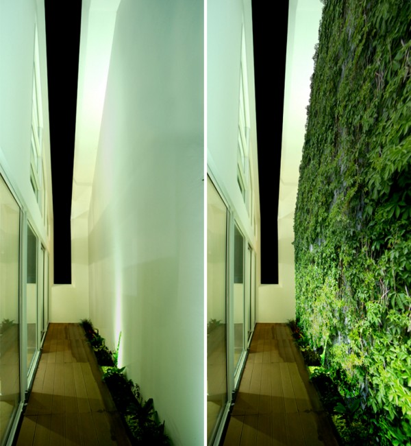 The courtyard as it looks now (left) and how it will look once the green wall grows in (right). Image via Sala2 Arquitectos.
