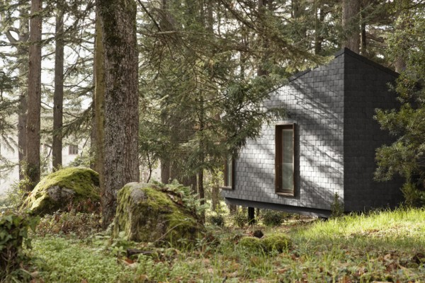 The cabins of Pedras Salgadas Park in northern Portugal are scattered among the trees. Image via Ivo Tavares Studio.