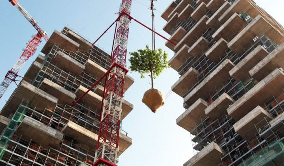 "One of the first of many trees to be hoisted atop the nearly completed ""vertical forest."" Image via Stafano Boeri Architetti."