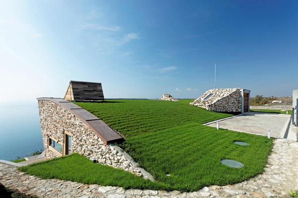 A green roof helps regulate temperatures at the Equinox House. Image via Ignatov Architects.