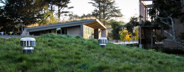 Ventilation turbines in the living roof. Image via Rana Creek Design