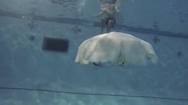 cryo jellyfish robot