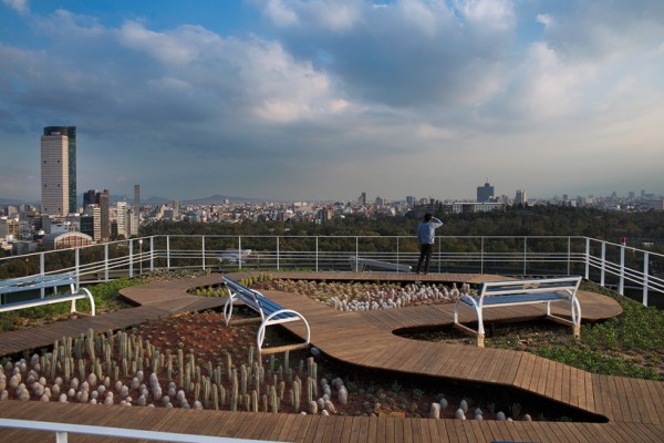 Former office tower helipad xeriscaped as a new green roof in Mexico City. Image via Rojkind Arquitectos.