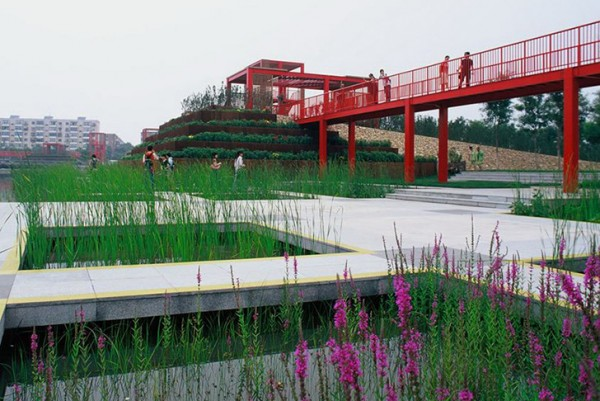 Raised footbridges and concrete walkways allow visitors to appreciate the restored marshes without damaging them. Image via Turenscape Architects.