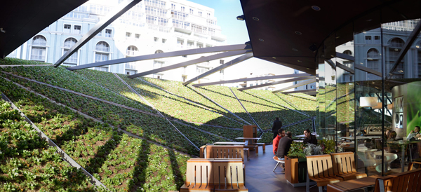 The sloping green wall in the open-air patio hides the gas pumps below. Image via Giorgi Khmaladze.
