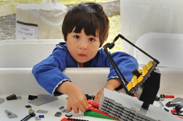 Pleygo LEGO Rental Service 1
