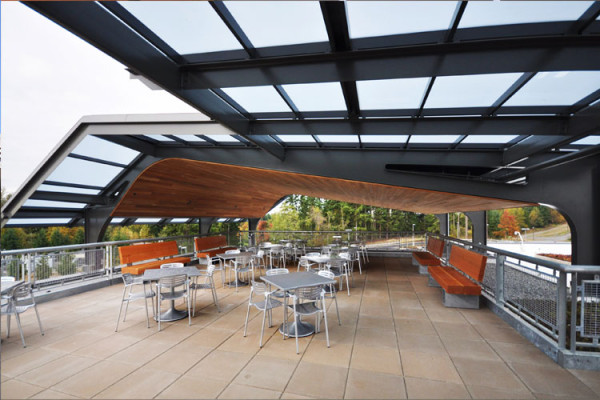 The wood elements in this rooftop patio were reclaimed from trees that were felled on the site to make way for the project. Image via CollinsWoerman.