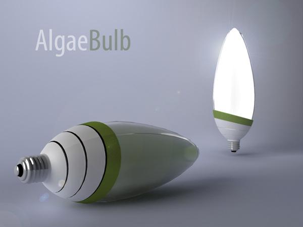 Algae Bulb