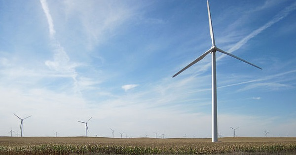 A wind farm east of Williams, Iowa (image via Wikimedia Commons)