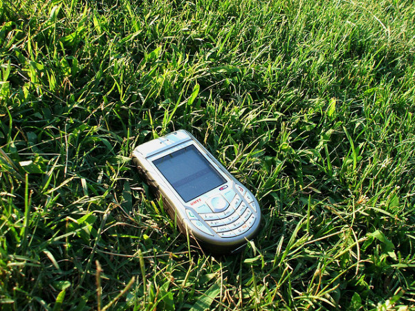 phone in grass