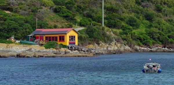 image via King Island Tourism