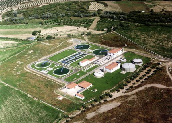 algae biomass plant