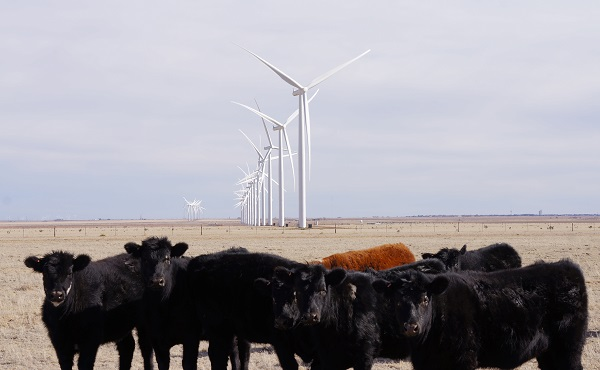 wind power texas panhandle