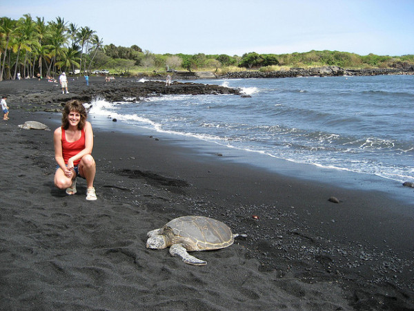 ecotourism greenwash sea turtles
