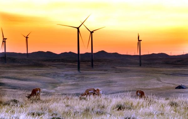 duke wind power prosecution