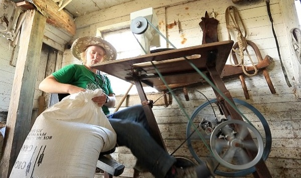 Using the machine to grind chicken feed (image via Pedal Power)