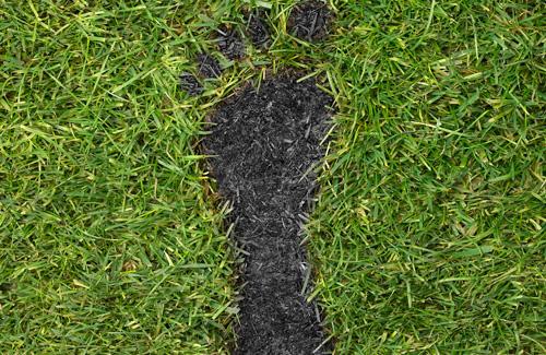 carbon-footprint-lg