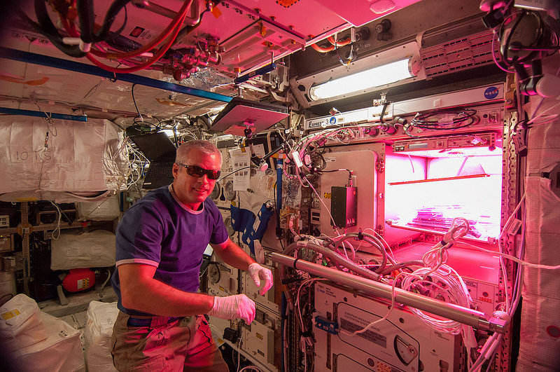 Astronaut Steve Swanson and the Veggie module aboard the ISS