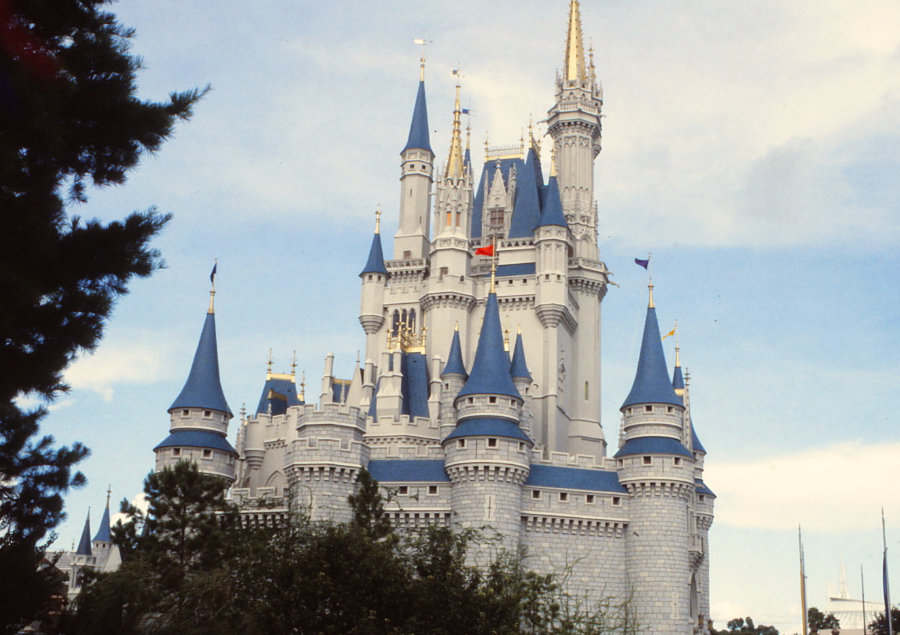 Disney World installs 270 acre solar farm