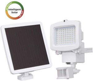 Westinghouse Solar Lights