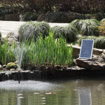best solar pond pump
