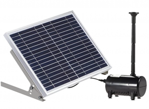 Lewisia 10W Solar Water Pump