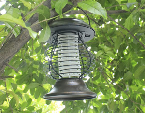 Naiflowers 2PC Solor Outdoor Lamp